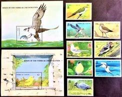 # Turks & Caicos 1990**Mi.900-09 Birds , MNH [21;107] - Vögel