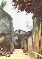 Afrique- SENEGAL Rue De L'Eglise Île De Gorée    (Photo Renaudeau PC 16 ) *PRIX FIXE - Senegal