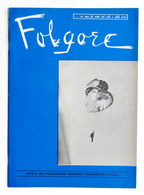 Aeronautica - Folgore - Rivista Paracadutisti - Supplemento Al N. 6 - 1973 - Livres, BD, Revues
