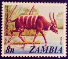 Zambie Zambia 1975 Animal Antilope Antelope Yvert 138 ** MNH - Zambia (1965-...)