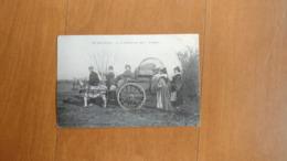 BRUN CARTE POSTALE CP ATTELAGE ANE RETOUR CUEILLETTE OLIVES PROVENCE TBE - Cartoline