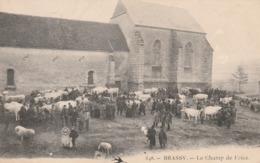 CPA:BRASSY (58) BÉTAIL AU CHAMP DE FOIRE.ÉCRITE - Francia