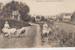 ROCHEFORT / PANORAMA PRIS DE MONTRIVAL / LES FILLES ET LES MOUTONS  1913 - Rochefort