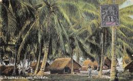 Océanie.  Polynésie Française    . Tahiti    A Coral Island       (voir Scan) - Tahiti