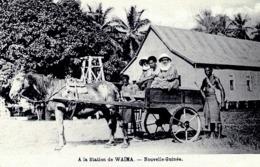PAPOUASIE-NOUVELLE GUINEE <  ATTELAGE A LA STATION DE WAIMA - Papoea-Nieuw-Guinea