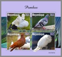 MOZAMBIQUE 2019 MNH Pigeons Doves Tauben M/S - OFFICIAL ISSUE - DH1944 - Columbiformes