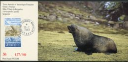 15523 T.A.A.F  N°159° 3F60 Faune : L'otarie à Fourrure  Kerguelen  Du 20.2.1993   B/TB - Cartas