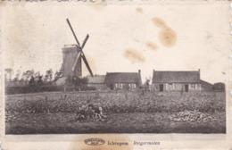 Ichtegem, Reigermolen, 2 Scans - Bélgica