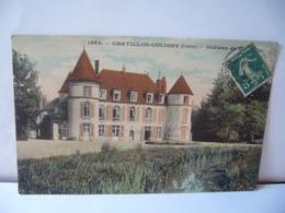 CHATILLON COLIGNY 45 LOIRET RÉGION CENTRE  LE CHÂTEAU CPA - Chatillon Coligny