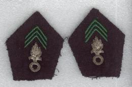 Insignes De Col Armée Française - Légion étrangère - Equipment