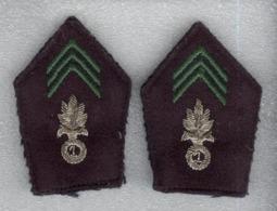 Insignes De Col Armée Française - 1er Régiment De Cavallerie Etrangère - Légion étrangère - Equipaggiamento