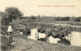 44)   De   POULIGUEN  à   LA  BAULE - Le Grand Clos    (   Vacher   ) - Le Pouliguen