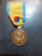 MÉDAILLE MILITAIRE A IDENTIFIER - Medailles & Militaire Decoraties