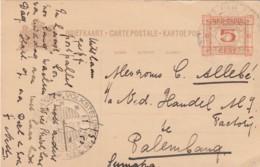 Nederlands-Indië Briefkaart 1930 Volkstelling - Niederländisch-Indien