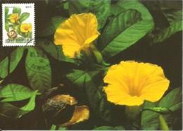 Carte Maximum - Taiwan - Formose - Wood Rose - Merremia Tuberosa - Cartes-maximum