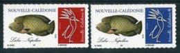 """TIMBRES** De 2019 Autocollants """"Poisson : LABRE NAPOLEON"""" - Nueva Caledonia"""