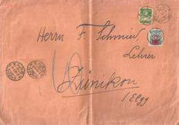 Taxierter Brief  Herrliberg - Zünikon Elgg            1924 - Switzerland