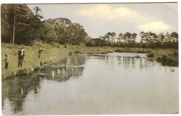 Bundrowse River Leitrim  Salmon Fishing Old Color Postcard With Good Stamp Sent To Denmark - Leitrim