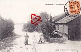 CALMPTHOUT - De Cambus - Kalmthout