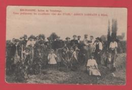 """BOURGOGNE""""Scène De Vendange""""vins Des Etablissements ADRIEN SARRAZIN""""Dijon""""1924""""élection Point à Pitre Au Verso - Autres Communes"""