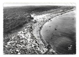 17 – BOYARDVILLE – ILE D'OLERON : La Grande Plage N° 55 - Ile D'Oléron
