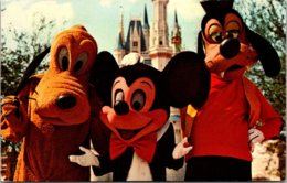 Walt Disney World Mickey Mouse Pluto & Goofy 1972 - Disneyworld