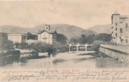 Z.432.  RAPALLO - Genova - Fiume Boato - 1904 - Autres Villes