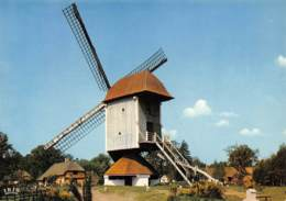 CPM - Provinciedomein BOKRIJK - Openluchtmuseum - Standerdmolen Uit Mol-Millegem 1788 - Genk