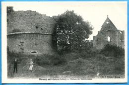 MEUNG Sur LOIRE Ruines De Rondonneau ( Animée Enfant Vélo Bicyclette ) Etat Excellent . Non écrite - Autres Communes