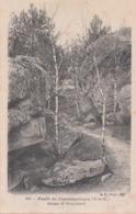 Fontainebleau (Forêt) - Gorges De Franchard - Fontainebleau