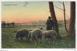 CAMPAGNA  ROMANA:  VISIONE  AGRESTE  -  FP - Parks & Gardens