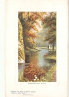 """E.Longstaffe. Baresford Dale, Staffs"" Tuck Oitte The Country Side Ser. PC # 9721 - Tuck, Raphael"