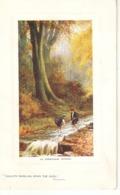 """E.Longstaffe. The Trenthm, Staffs"" Tuck Oitte The Country Side Ser. PC # 9721 - Tuck, Raphael"