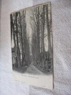 SAINT PONS - AVENUE DE LA GARE - STRADA DELLA STAZIONE BN VG 1904 - Saint-Pons-de-Mauchiens