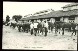 127 : Pansage Des Chevaux (Artillerie) - Camp De Chalons (51-Marne) - (Gros Plan Animé) - Barracks