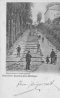 Grammont. Escaliers De La Montagne.  Scan - België