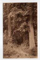 - CPA GREZ-DOICEAU (Belgique) - Les Deux Haies - Imp. L. Michaux - Edition Nels - - Grez-Doiceau