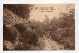 - CPA GREZ-DOICEAU (Belgique) - Chemin Creux Dans Le Bois De Beausart (avec Personnages) - Photo P.I.B. - - Grez-Doiceau