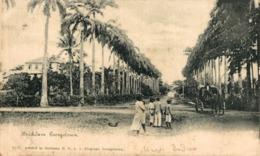 BRICKDAM GEORGETOWN  BRITISH GUIANA GUYANE BRITANNIQUE GUAYANA GUYANA - Postales