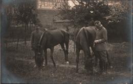 ! [59] Sin-le-Noble, Pferde, Horses, 1917, Carte Photo Allemande, 1. Weltkrieg, Guerre 1914-18, Fotokarte - Frankreich