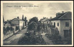 Novara - Oleggio - Villa Dei Pioppi E Villa Luisa - Fp Vg - Novara