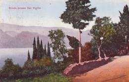 Punta San Vigilio (Lago Di Garda) * Strada, Strasse, Partie, See, Dolomiten, Alpen * Italien * AK1904 - Verona