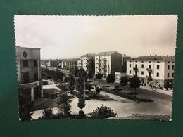 Cartolina Corcagnano - Piazza E Municipio - 1960 - Parma