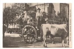 RICORDO DELLA SETTIMANA ABRUZZESE - AGOSTO 1923 - Italy