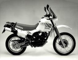 Moto Morini 501 Camel  24*17 +- Cm Moto MOTOCROSS MOTORCYCLE Douglas J Jackson Archive Of Motorcycles - Coches