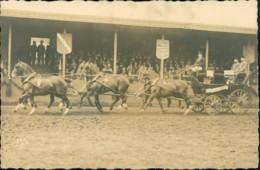 AK Echtfoto Sechsspänner-Kutsche, Ca. 1910/20er Jahre (31967) - Chevaux