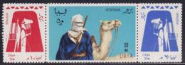 Libya 223/25 - Tuareg 1966 - MNH - Libye