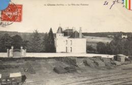 Chenu - (Sarthe) - La Villa Des Violettes -  (018) - France