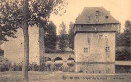 België  Assesse Crupet Le Chateau Kasteel       M 1246 - Assesse