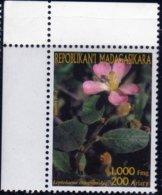 Madagascar 2003 Fleurs Tropicales / Leptolaena / Tropical Flowers N° 1844 Neuf MNH TB - Madagascar (1960-...)